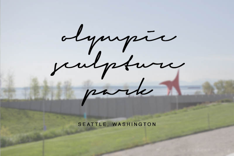 team-wiking-olympic-sculpture-park-seattle-washington-usa