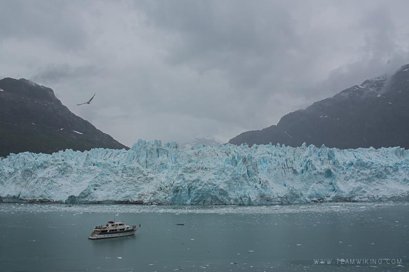 team-wiking-alaska-cruise-day-7-glacier-bay-3