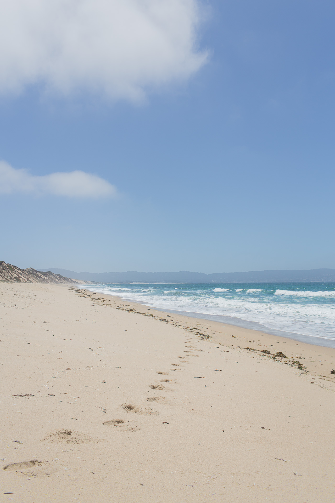 Fort Ord Dunes near Monterey, California