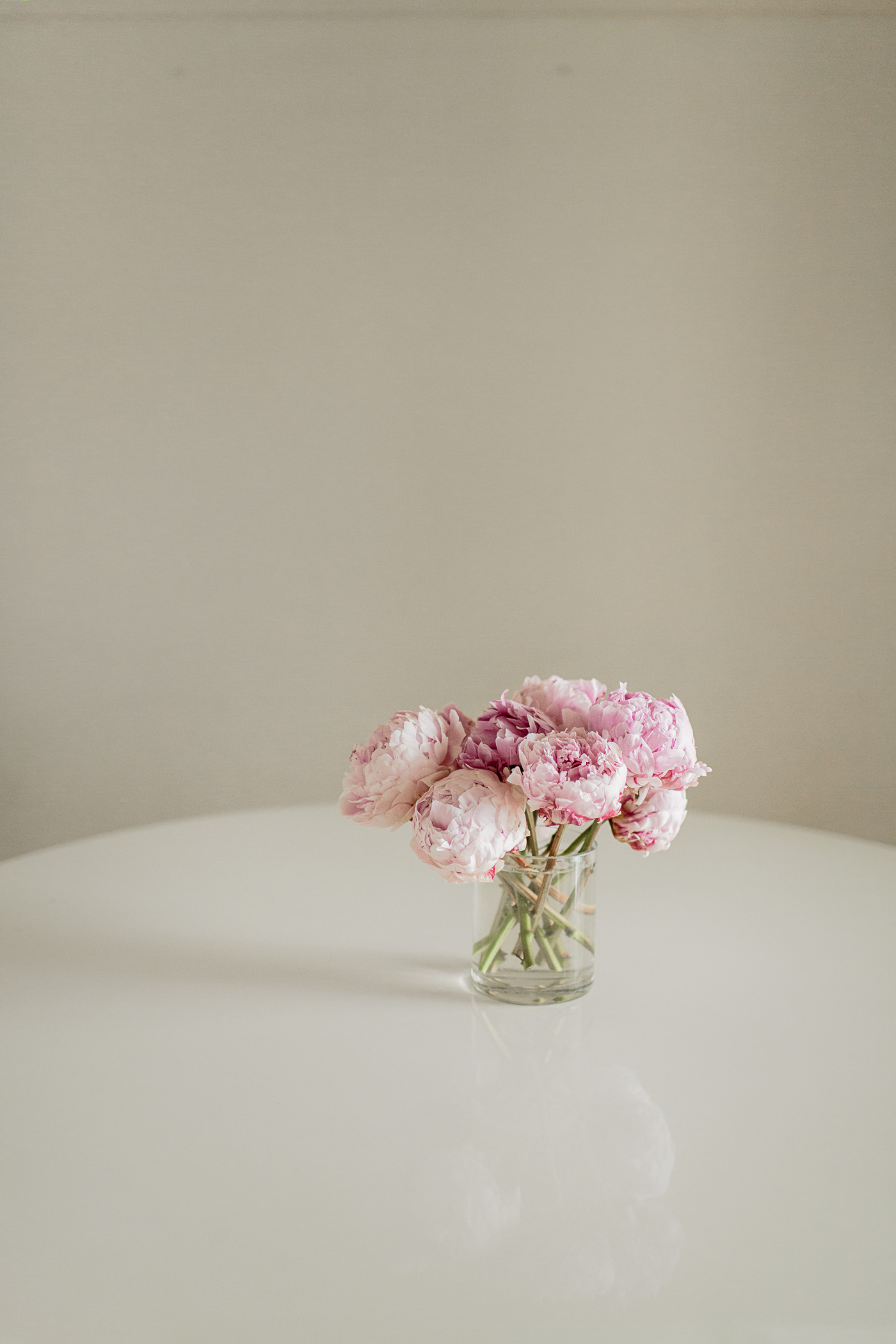 pink peonies hej doll a california travel life and style blog by