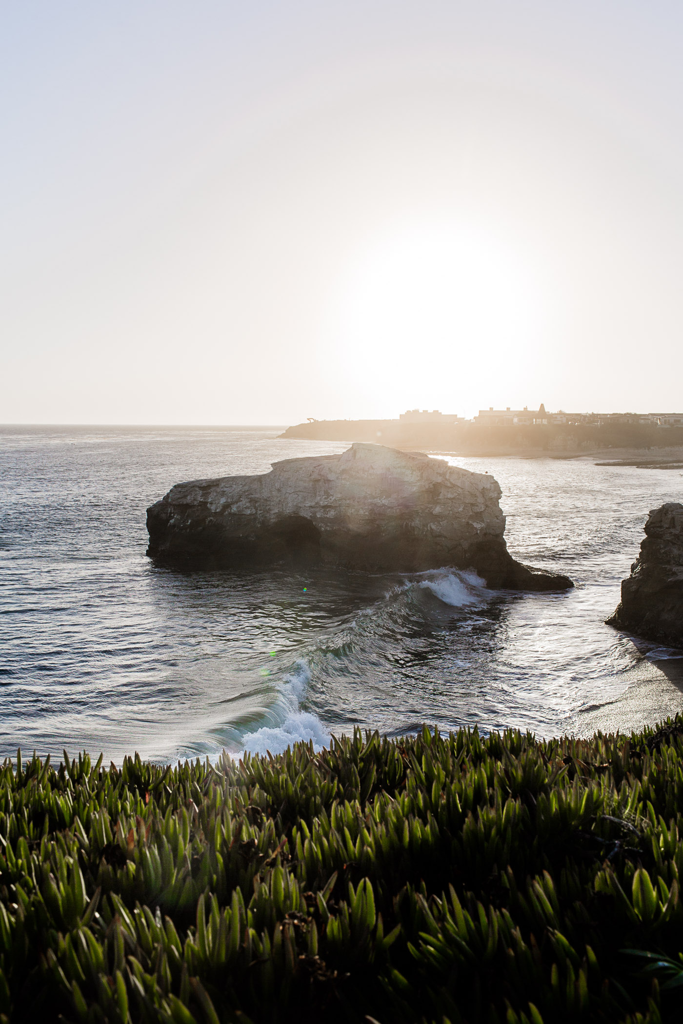 Sunset at Natural Bridges in Santa Cruz, California