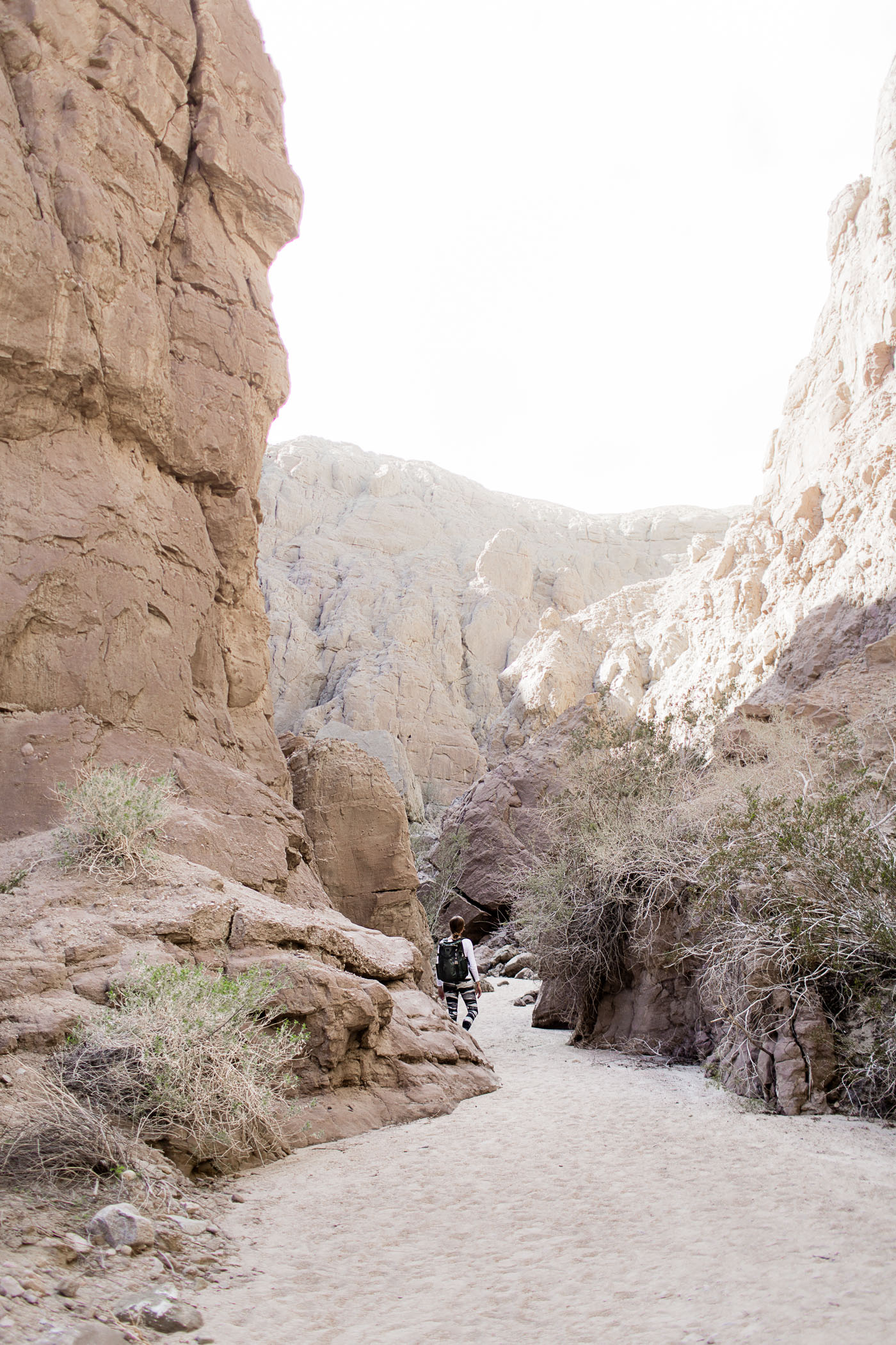 Mecca Hills Painted Canyon Ladder Hike near Palm Springs and Coachella Valley, California