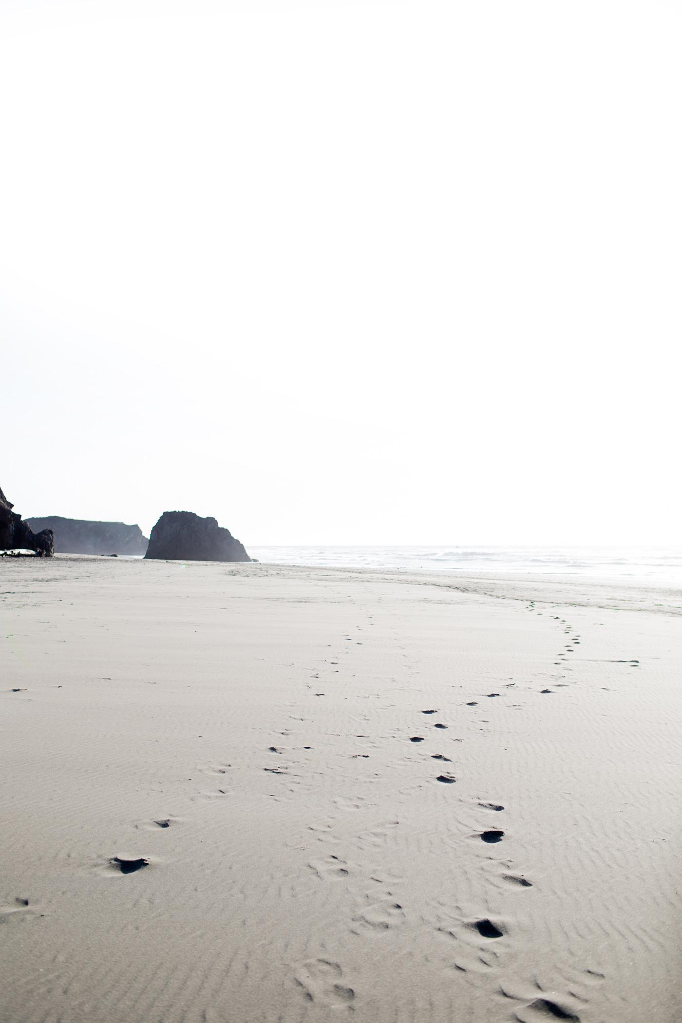 Seaside Beach, north of Fort Bragg, California